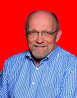 Gerd Bollmann, MdB