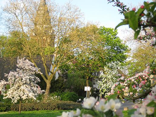 Romanusplatz im Frühjahr 2011