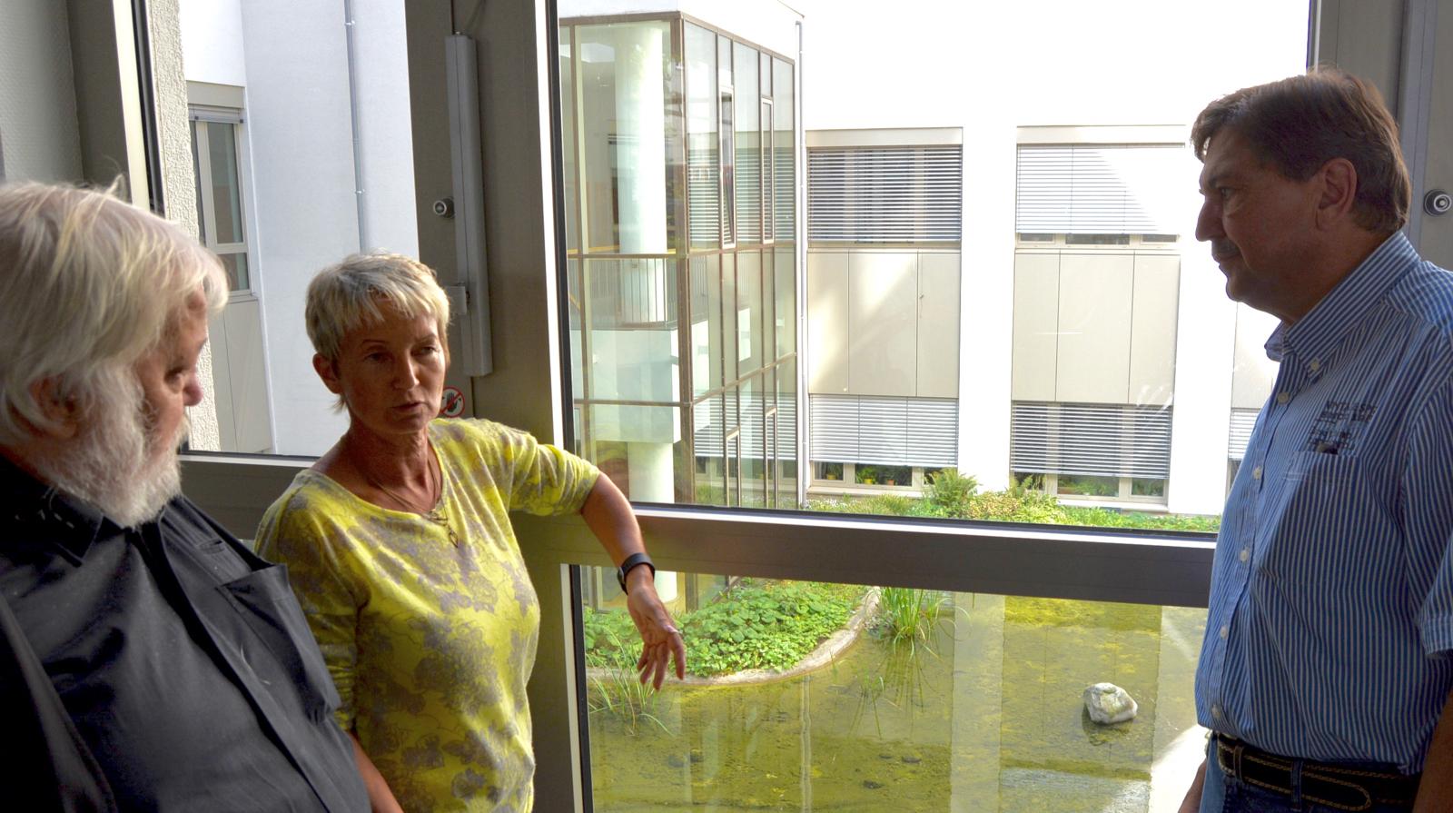3. Langer Tag der StadtNatur: Die SPD-Ratsfraktion hatte zu einer Information über Dachbegrünung am Beispiel des Technischen Rathauses eingeladen. Im Bild unter anderem Martina Schmück-Glock, Vorsitzende des Ausschusses für Umwelt, Sicherheit und Ordnung, sowie Klaus Hemmerling, Sprecher der SPD im Umweltausschuss.