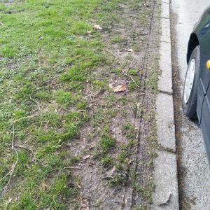 Die Reifen hinterlassen sichtbare Beschädigungen im Rasen.