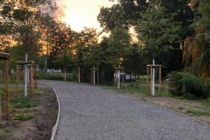 Die Arbeiten im Park Am Ehrenmal zeigen erste Erfolge.